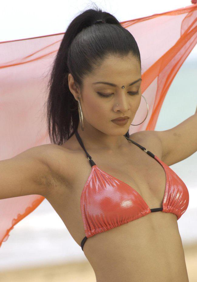 World Celebrity Celina Jaitley Hot Bikini Sexy Celina -5814