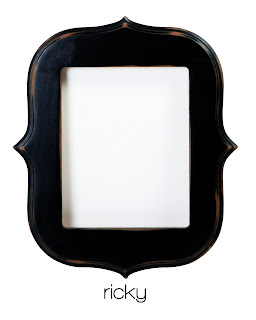 Awesome Frames|New products for 2011|Las Vegas Photographer