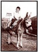 O menino engº desde pequenino que gosta de burros