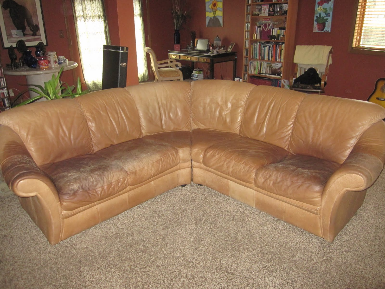 Restoring A Leather Couch Home Improvement