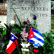 Carlos Raúl Sepúlveda