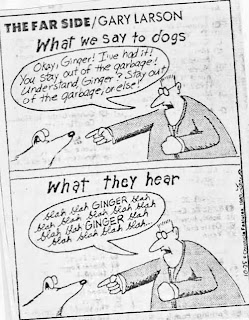 Gary Larsen, What we say to dogs...