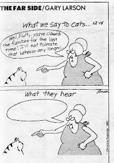 Gary Larsen, What we say to cats...