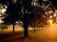 ألبوم الصور الطبيعية 12453.jpg