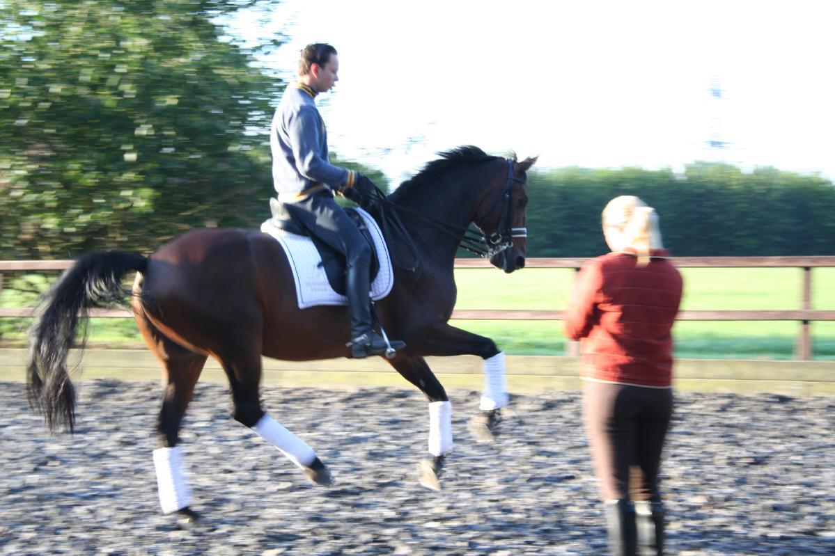 [Michelle+Evaluates+a+Horse.jpg]