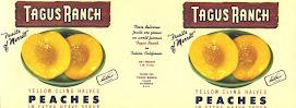 Tagus Peach Label