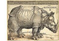 Rinoceronte, de Durero