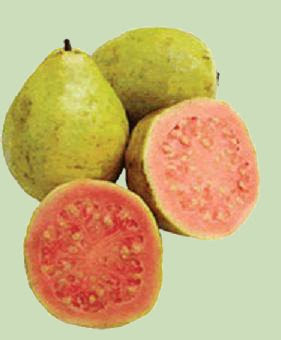 Frutas Raras y Exóticas