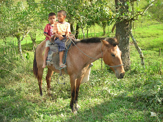 Honduran boys on horse