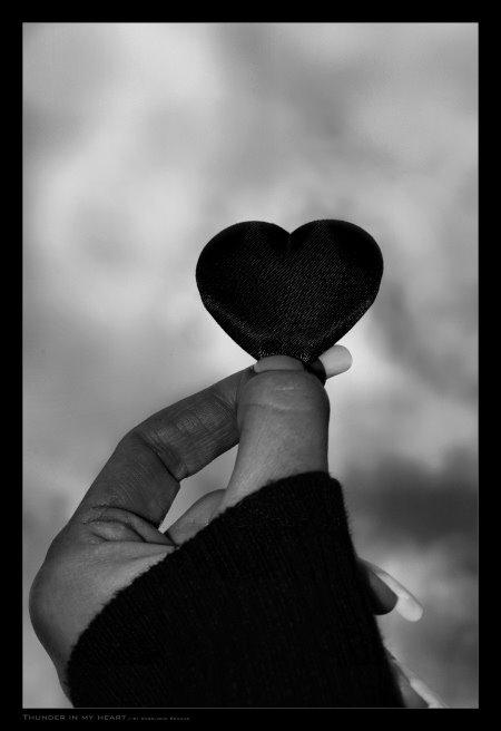 [coração+de+papel]