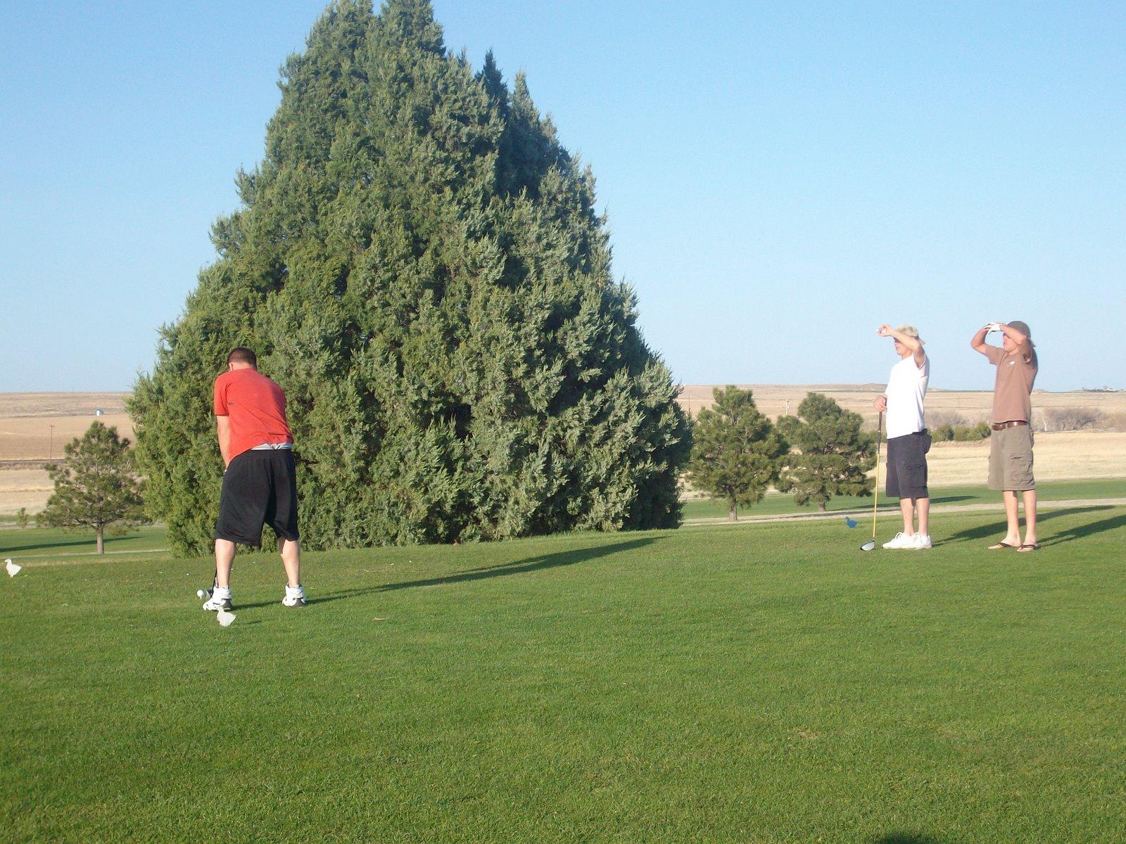 [golf+009.jpg]