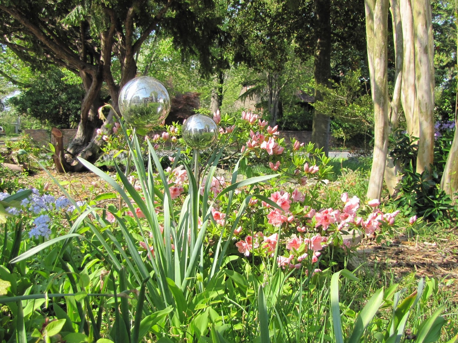 Views From The Garden Landscaping Ideas For A Wooded Lot