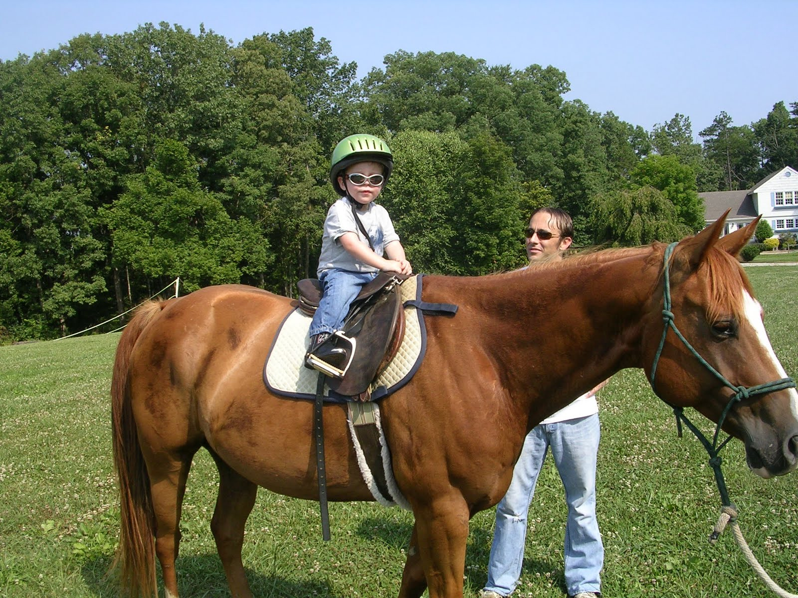 The Evans Family Horse Riding Lessons