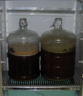 Fresh Hopped Pale on the left, Fall Kolsch on the right.