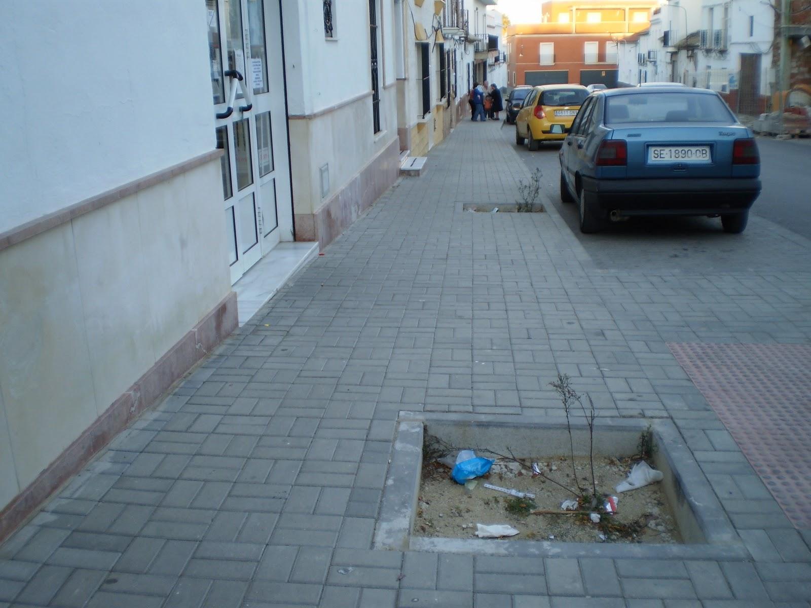 Lantejuela mafranca arriates sin plantas - Plantas para arriates ...
