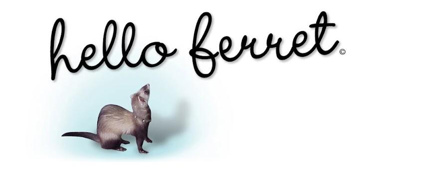 hello ferret