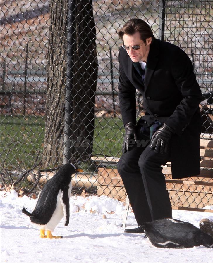 pinguine werfen