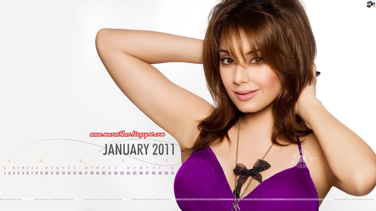 santa banta bollywood calendar 2011 wallpapers for desktop