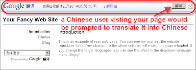 Translate your website with Google | Expand your audience globally