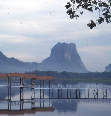 ခ်စ္ေသာဇြဲကပင္