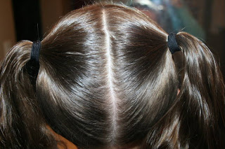 hair styles step by step two leaf clover st s day hairstyles 2291