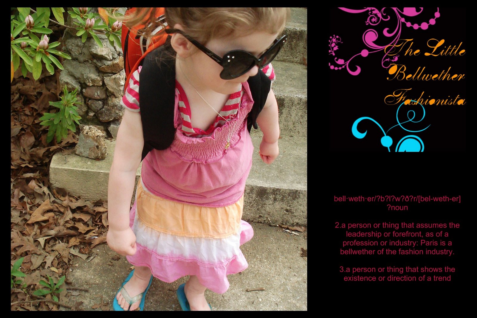 The Little Bellwether Fashionista
