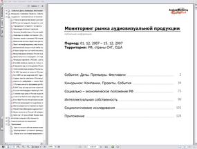 Пример информационного отчета - вид1