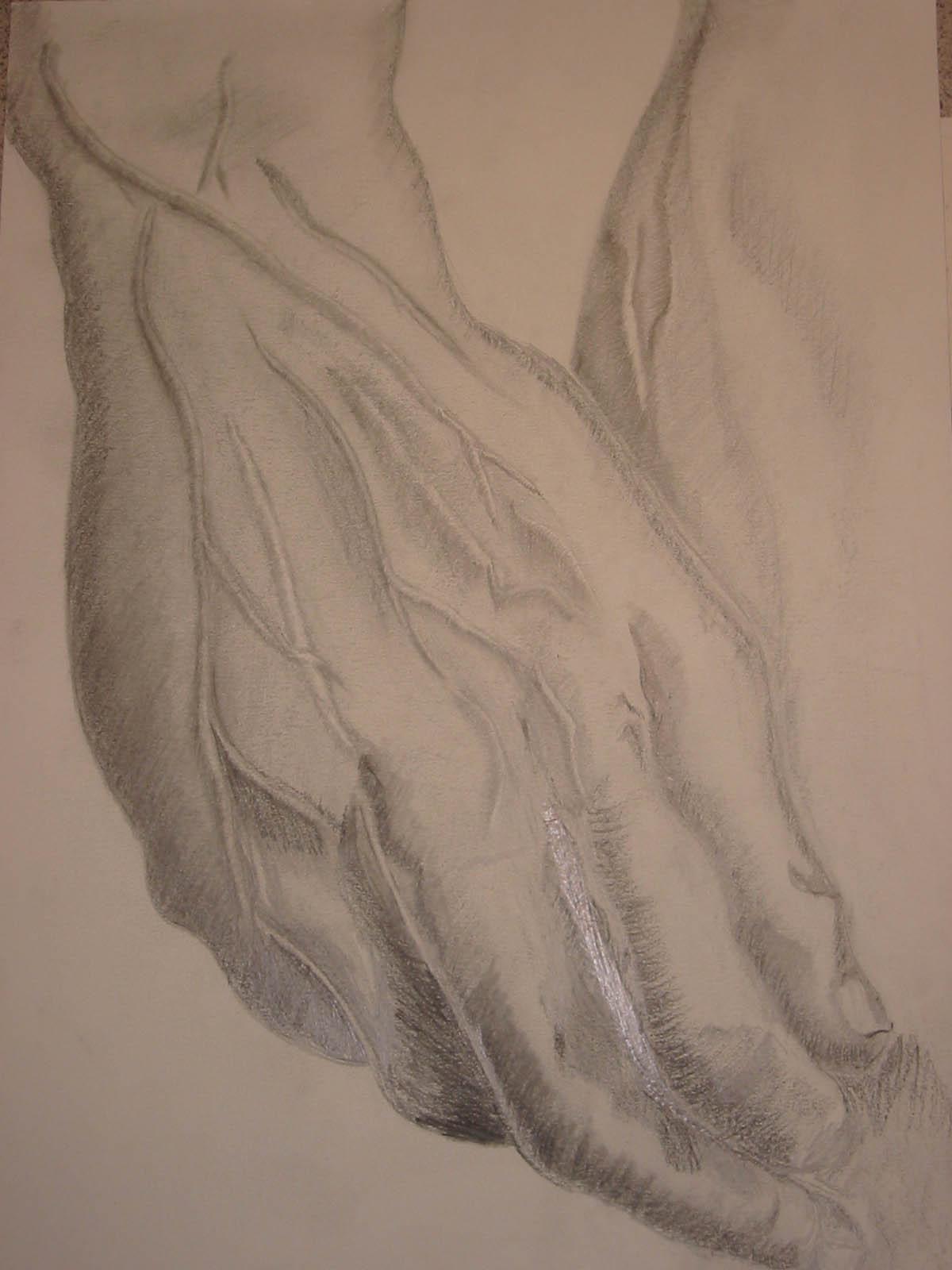 Mãos de Davi (Michelangelo)