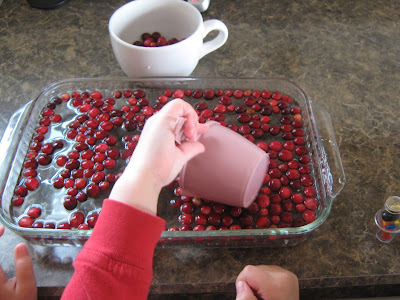almost unschoolers thanksgiving science cranberries. Black Bedroom Furniture Sets. Home Design Ideas