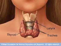 thyroid-diseases,hyperthyroidism and hypothyroidism