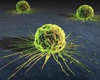 cancer-origin