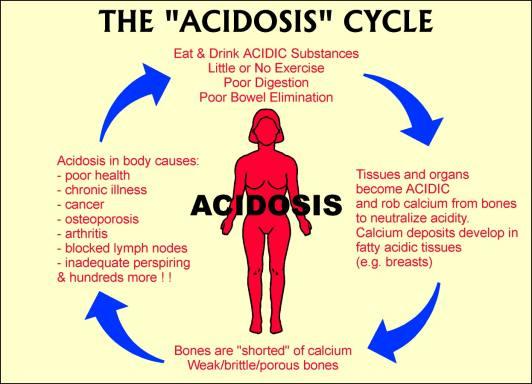 [acidosiscycle.jpg]