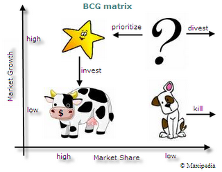 Image result for gambar matrik bcg