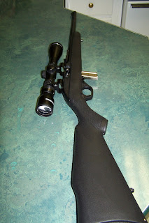 22+rifle+for+sale
