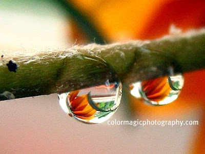 Water drop mirror