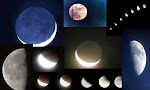 Bunch of Moons