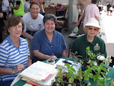 Master Gardeners at River Market, Little Rock, Arkansas