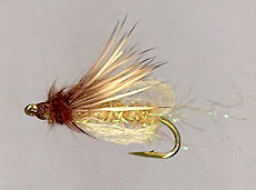Emergent Caddis Pupa