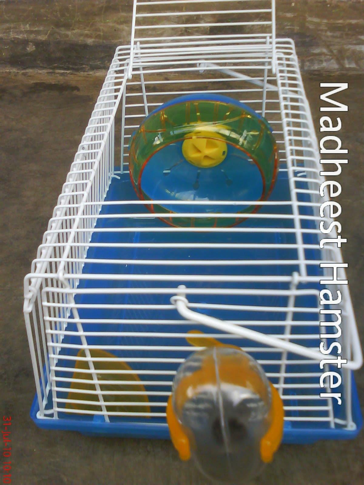 Madhee's Hamster & Sugar Glider: KANDANG HAMSTER