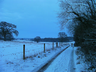 leweston school fields under snow