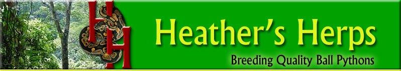Heather's Herps