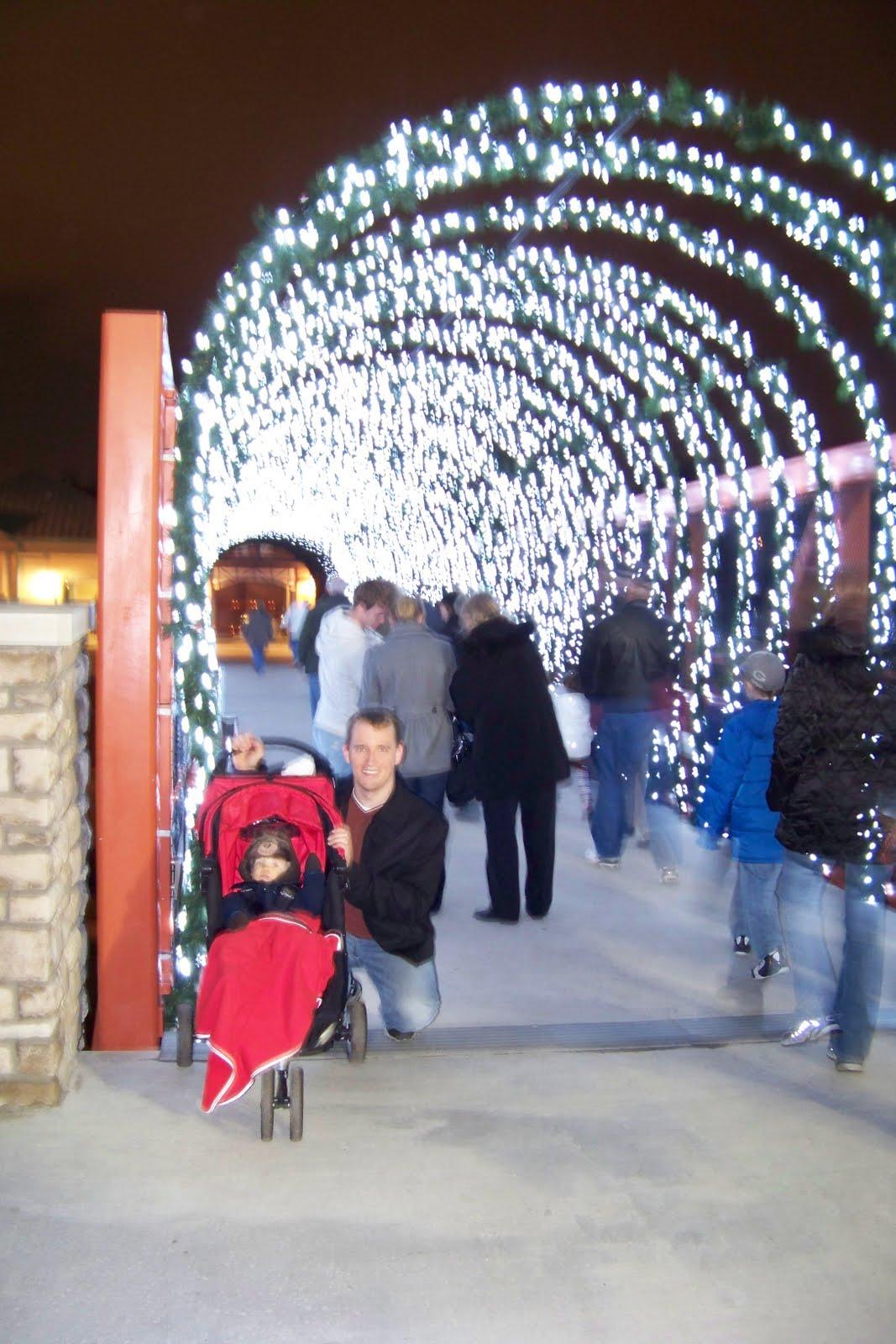 Cincinnati Zoo Festival Lights Ticket Cost