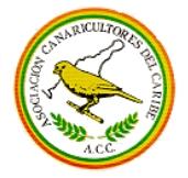 Asociación de Canaricultores del Caribe