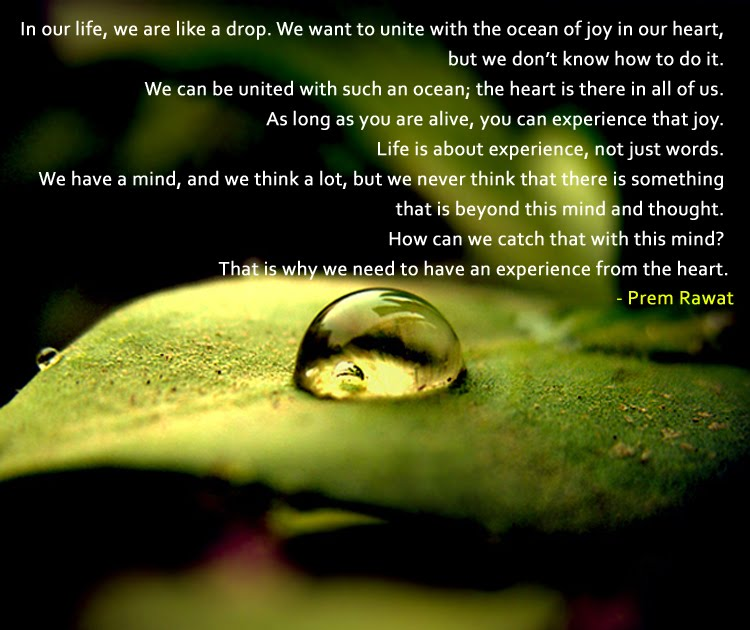 Prem Rawat Quote Of The Day: Life Is About Experience, Not Just Words.