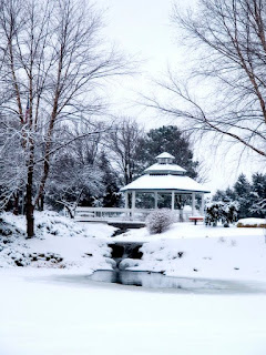 gradina mare, chiosc curte iarna, zapada, lac inghetat, pomi mari