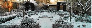 gradina iarna, zapada in gradina, ger, plante ornamentale, cum protejam plantele de ger
