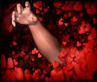 aşk , love, güller, rose