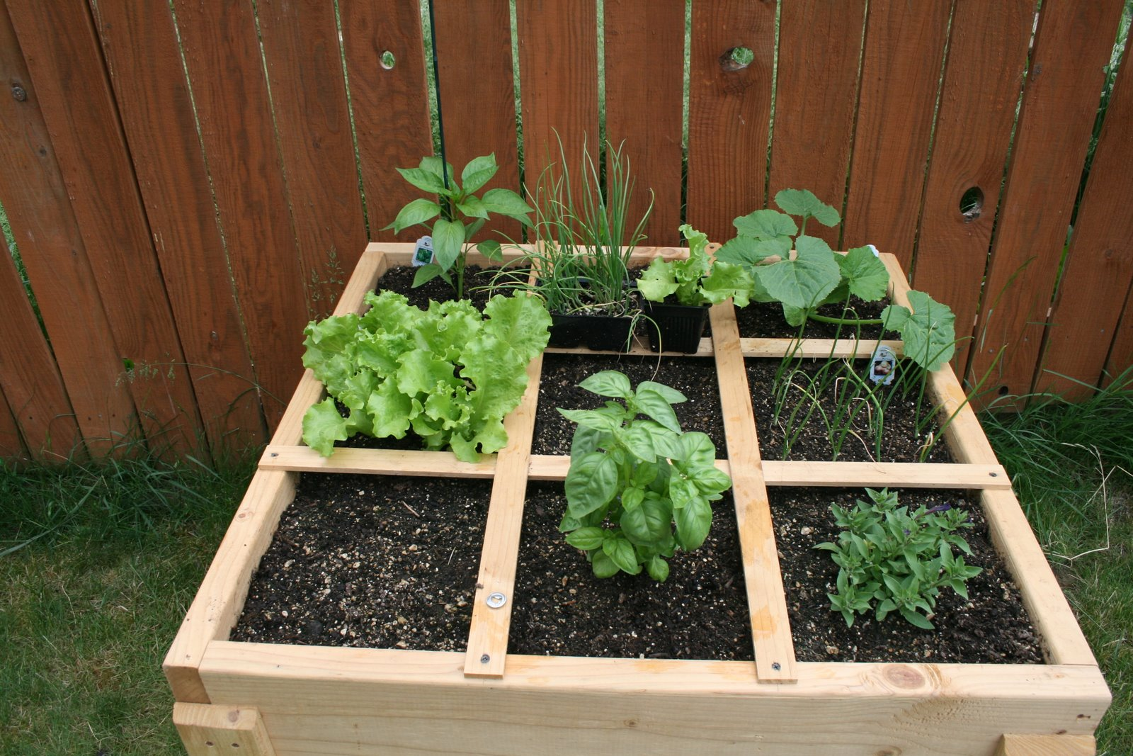 Gourmet Gardening Gals Square Foot Garden Materials List