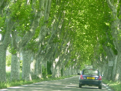 Driving in Provence