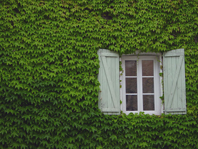 A window in Villecroze, France